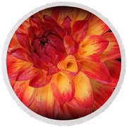Fiery Red And Yellow Dahlia Round Beach Towel