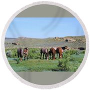 Fillies Day Out Round Beach Towel