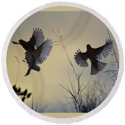 Finches Silhouette With Leaves 6 Round Beach Towel