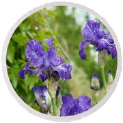 Fine Art Floral Prints Purple Iris Flowers Canvas Irises Baslee Troutman Round Beach Towel