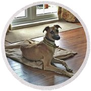 Finly - Ava The Saluki's New Companion Round Beach Towel