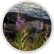 Fire Weed Looking At Lake Superior Round Beach Towel
