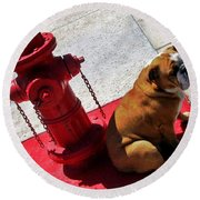 Fireplug Bulldog Round Beach Towel