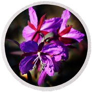Fireweed Round Beach Towel