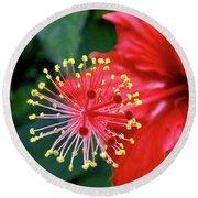 Fireworks - Hibiscus Round Beach Towel