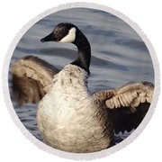 First Day Of Spring Goose Round Beach Towel