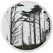 First Line Trees Along The Pacific Ocean Round Beach Towel