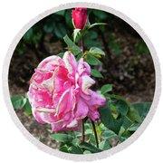First Prize Rose Hybrid Tea Round Beach Towel