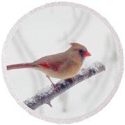 First Snow - Female Cardinal Bird Round Beach Towel
