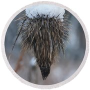 First Snow On The Thistle Round Beach Towel