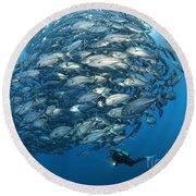Fish Watch Round Beach Towel