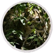 Fishing Cat Round Beach Towel