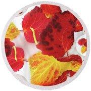 Five Autumn Leaves Round Beach Towel