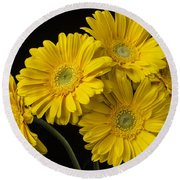 Five Gerbera Daisies Round Beach Towel