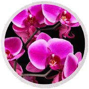 Five Orchids  Round Beach Towel
