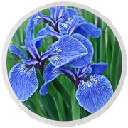 Flag Iris Blues Round Beach Towel