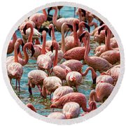 Flamboyance Of Flamingos Round Beach Towel