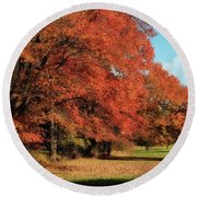 Flame Trees Round Beach Towel