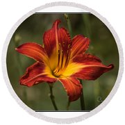 Flaming Lily Round Beach Towel