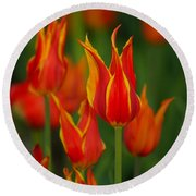 Flaming Tulips Round Beach Towel
