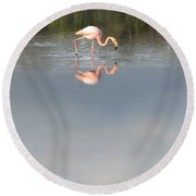 Flamingo 2 Round Beach Towel