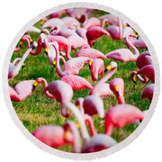 Flamingo 6 Round Beach Towel
