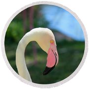 Flamingo Closeup Round Beach Towel