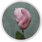Flamingo Feathers Round Beach Towel