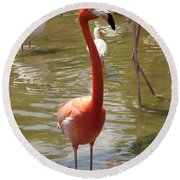 Flamingo II Round Beach Towel