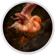 Flamingo In Darkness Round Beach Towel