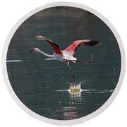 Flamingo Kick Off  Round Beach Towel