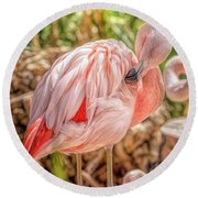 Flamingo2 Round Beach Towel