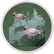 Flamingoes Posing Round Beach Towel
