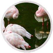 Flamingos 10 Round Beach Towel