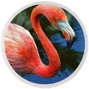 Flamingo Wading In Pond Round Beach Towel