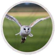 Flight Of The Barn Owl Round Beach Towel