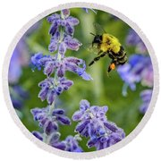 Flight Of The Bumble Bee Round Beach Towel