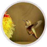 Flight Of The Hummer Round Beach Towel