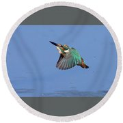 Flight Of The Kingfisher Round Beach Towel