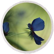 Flight Of The Lobelia  Round Beach Towel