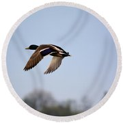 Flight Of The Mallard Round Beach Towel