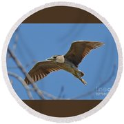 Flight Of The Night Heron Round Beach Towel