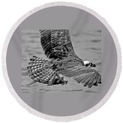 Flight Of The Osprey Bw Round Beach Towel