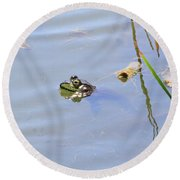 Floating Frog Round Beach Towel