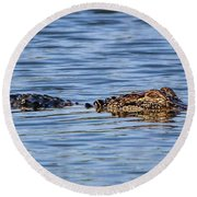 Floating Gator Round Beach Towel