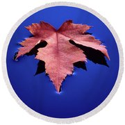 Floating Leaf 2 - Maple Round Beach Towel