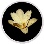 Floating Magnolia Flower Round Beach Towel