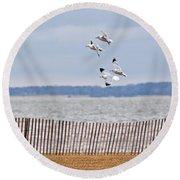 Flock Of Gulls Round Beach Towel