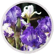 Flora Bota Irises Purple White Iris Flowers 29 Iris Art Prints Baslee Troutman Round Beach Towel
