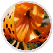 Floral Abstracts Art Prints Summer Tiger Lily Baslee Troutman  Round Beach Towel